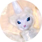 Katzenfee